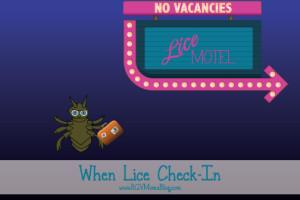 Lice-Motel---When-Lice-Check-In