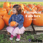 Pumpkin Patches in the RGV