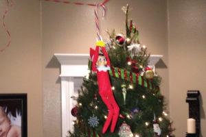 Elf on the Shelf 2014 :: RGV Moms Blog