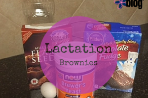 Lactation Brownies RGV moms blog Recipe