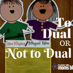 To Dual or not to Dual