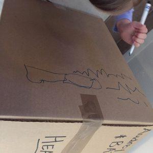 cardboard canvass