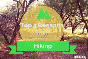 Top 5 Reasons to Go Hiking