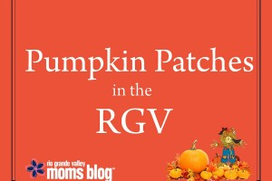 2015 Pumpkin Patches in the RGV