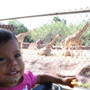 Gladys Porter Zoo - Brownsville, TX