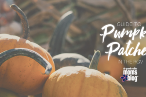 Pumpkin Patches in the RGV 2016