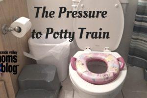 the pressure to potty train