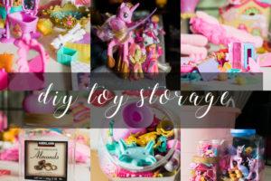 pony-storage-title