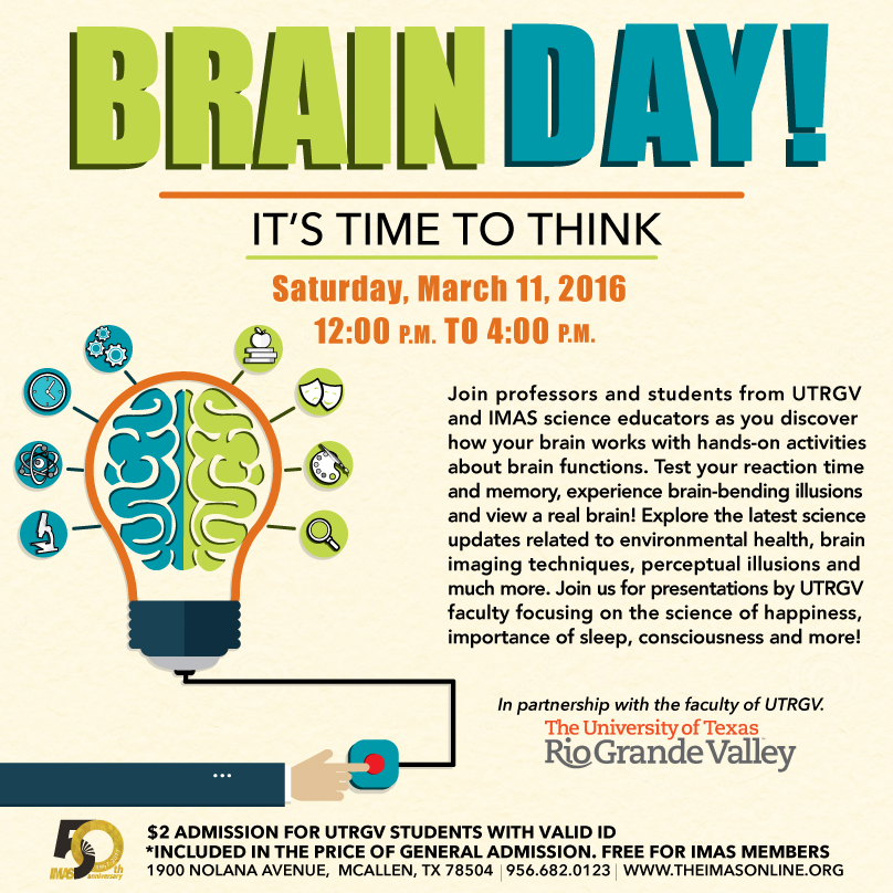 IMAS Brain Day