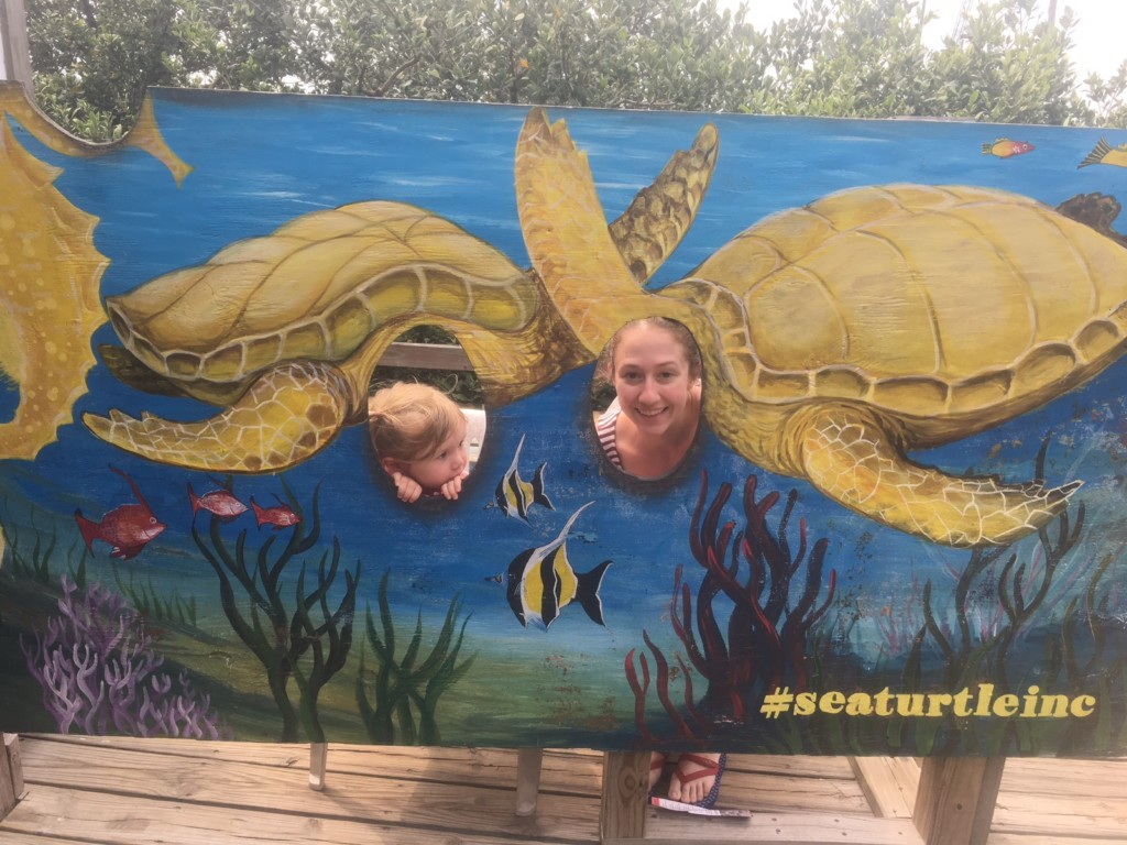Sea Turtle Inc SPI