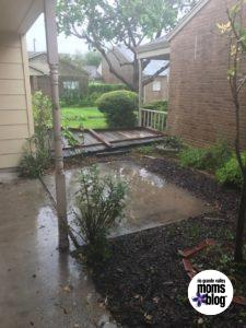 Corpus Christi Fence - Rio Grande Valley Moms Blog