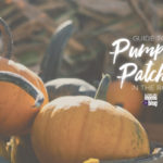 Pumpkin Patch Guide [RGV 2017]