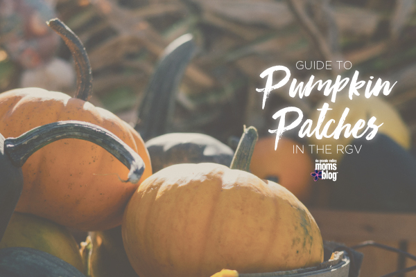 Pumpkin-Patches-Guide-600x400-rgv