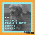 Woof! Advice from a New Puppy Parent