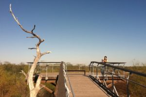 Fall Getaways in the RGV