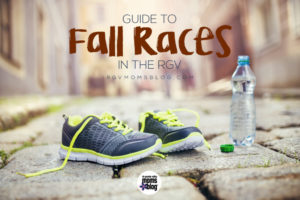 RGVMB Guide to Races 2017