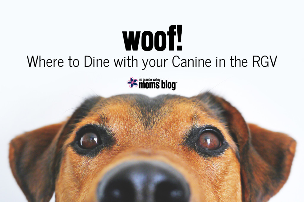 Canine Dining RGV
