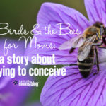 The Birds and the Bees for Moms: A Story about Trying to Conceive