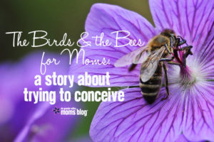 Birds and Bees Conceive