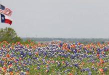 spring-break-Texas-travel-guide
