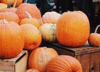 2021-guide-rgv-pumpkin-patch