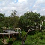 Bentsen-RGV State park