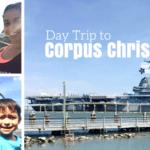 Day Trip to Corpus Christi