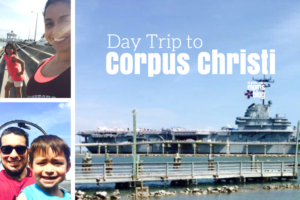 Day Trip to Corpus Christi Texas from the RGV